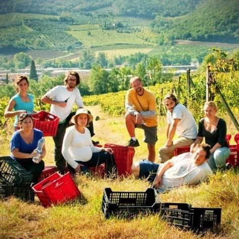 Сельский туризм диплом